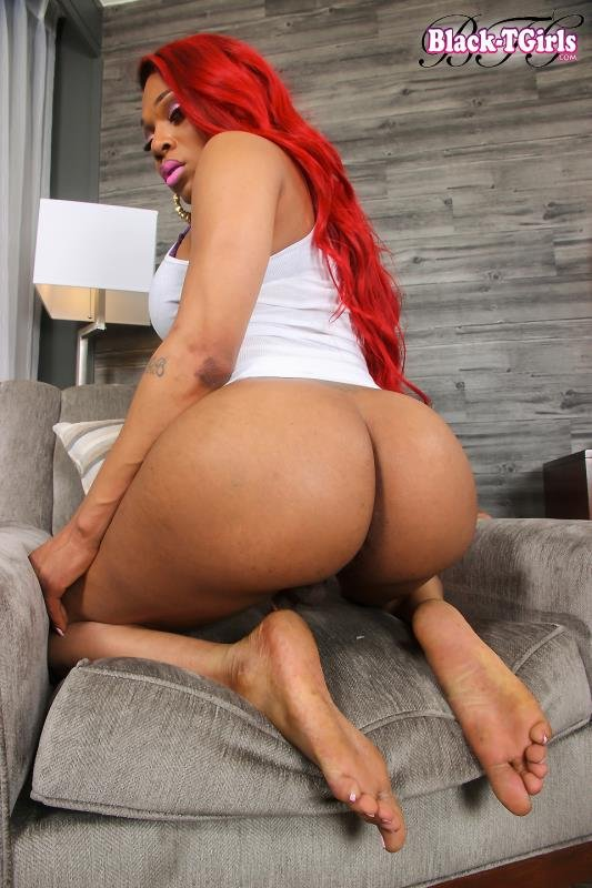 Amanda Coxxs - Sexy Amanda Coxxs Cums On The Table! (Transsexual / Masturbation) [HD 720p] - Black-TGirls.com