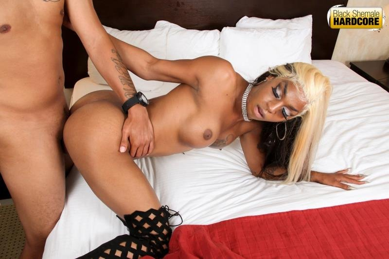 Salina Samone - Pounded By Mister (Transsexual / Anal) [HD 720p] - BlackShemaleHardcore.com