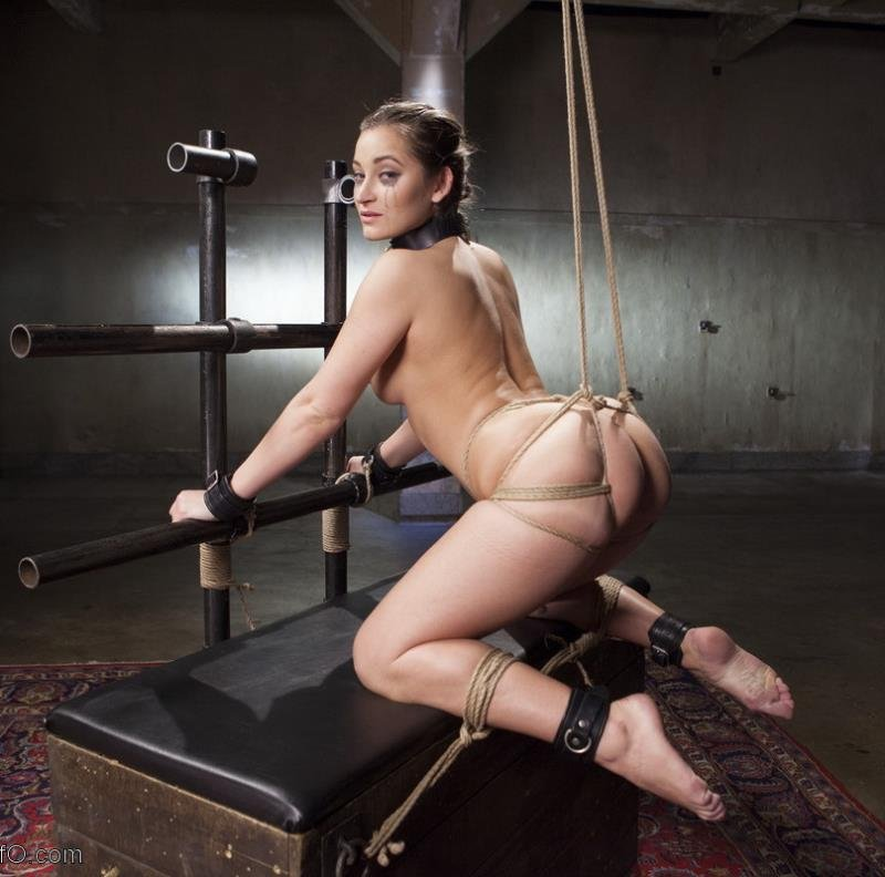 Dani Daniels, James Mogul, Michael Vegas - Cane Training Dani Daniels, Day Three (BDSM / Fetish) [SD] - Thetrainingofo.com