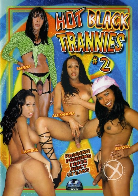 Marzia, Sefora, Alexandra, Cyntia, Dunia Montenegro - Hot Black Trannies 2 (Transsexual / Anal) [WEBRip/SD 384p] - Channel 69