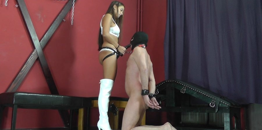 Mistress Amanda - FORCED SUCKING OF AMANDA'S COCK (Femdom, Humilation) [FullHD 1080p] - Cruel-Strapon.com