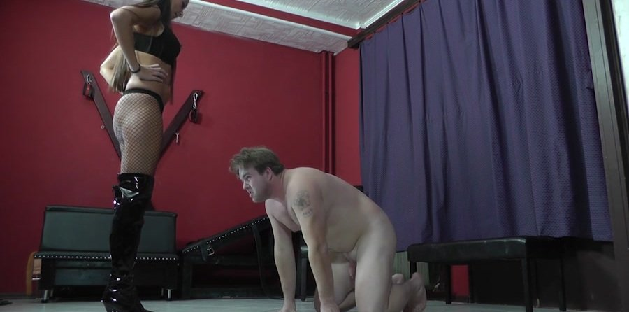 Mistress Amanda - THE PERFECT INTERROGATING METHOD (Femdom, Humilation) [HD 720p] - Cruel-Strapon.com