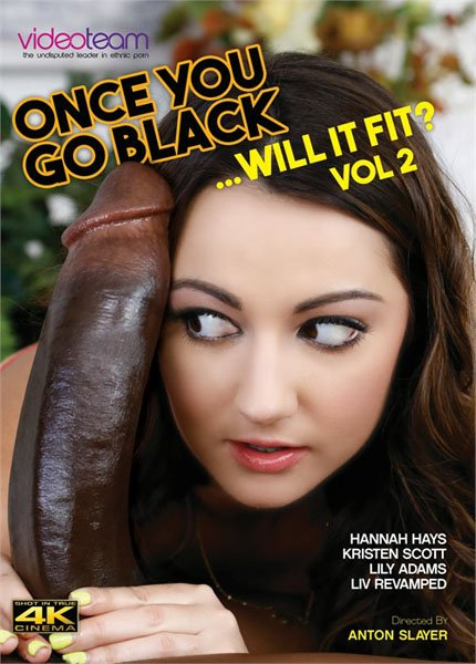 Once You Go Black Will It Fit 2 (2018/WEBRip/SD)